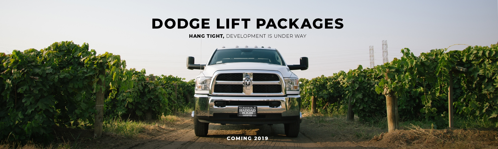 """10"""" - 12"""" Cognito Lift Packages"""